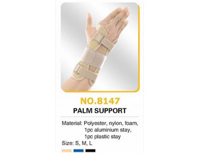Palm support