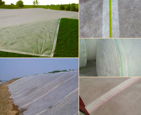 Frost Protection Non Woven Fabric